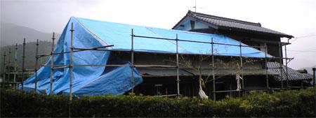 2008-4-23-4.jpg