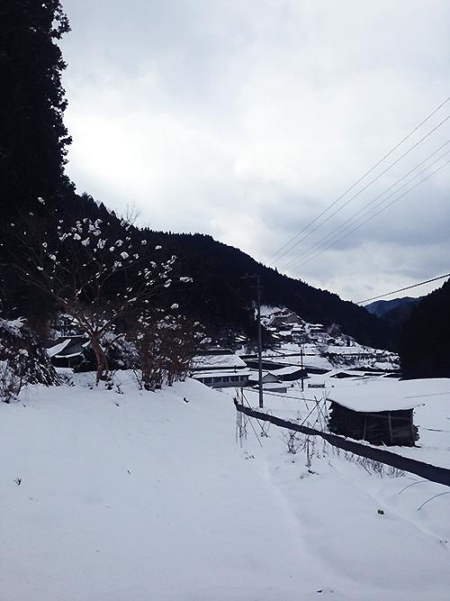 2016-02-17-1.jpg